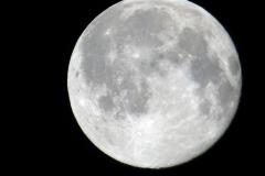 Moon62116