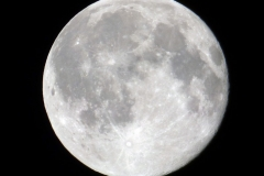 Moon62116_2